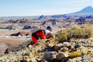 Yusuke and Jon collecting samples