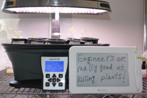 phrase-of-the-day-engineers-and-plants